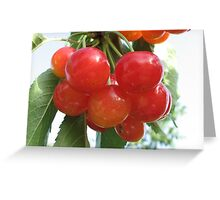 Chery time Greeting Card