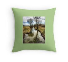 Country Spring Throw Pillow