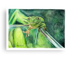 Hop The Frog Canvas Print