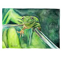 Hop The Frog Photographic Print
