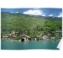 along lake Brienz shore Poster