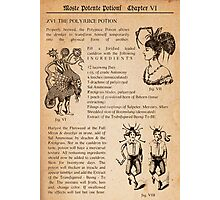 HARRY POTTER - POLYJUICE POTION Photographic Print