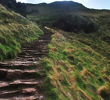 Stairs up to King Arthurs Seat, Edinburgh by Laura Sanders