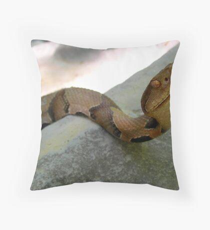 A Copper Smile Throw Pillow