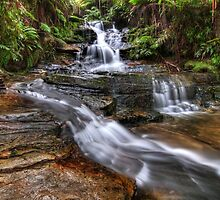 Leura Cascades NSW by Michael Thoms