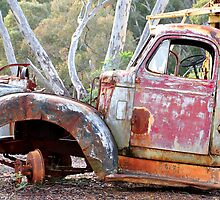 I Need New Tyres - Hill End NSW Australia by Bev Woodman