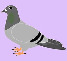Pigeon Design by biglnet