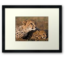 Ever So Watchful! Framed Print