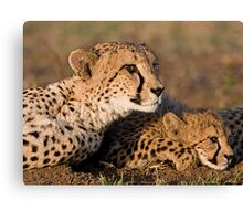 Ever So Watchful! Canvas Print