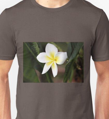 Frangipani #5 Unisex T-Shirt