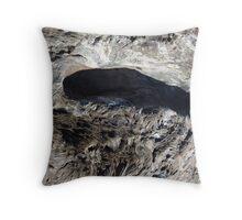 Patterns in Driftwood (1) Throw Pillow