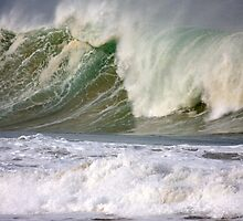 Surfs Up Sands Up by Kelly Robinson
