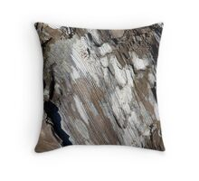 Patterns in Driftwood (4) Throw Pillow