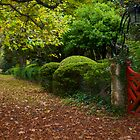 Autumn gate by Craig Shadbolt