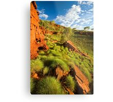 Sunkissed Spinifex Metal Print