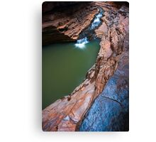 Kermit's Pool Canvas Print