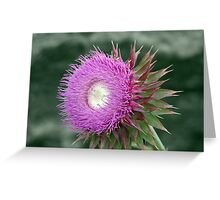 Unknown Flower Greeting Card
