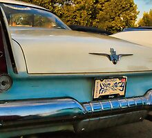 Regent Tail Fins by sundawg7