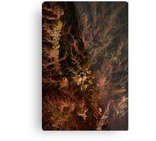 Tasselled Anglerfish Portrait Metal Print