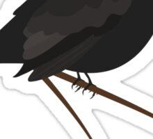Cute Blackbird Sticker