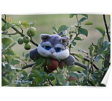 Cat in a Tree Poster