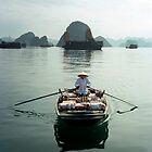 Ha Long Bay, Viet Nam by docophoto