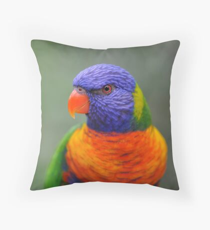 Bright Eyes - rainbow lorikeet Throw Pillow