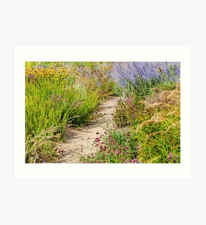 The beautiful summer garden Art Print