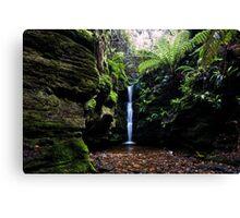 Secret Falls,Cascade,Tasmania  Canvas Print