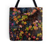 Dreaming of Leaves in Every Hue Tote Bag