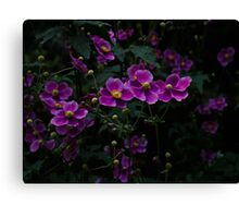 Royal Flowers Canvas Print
