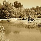 A Horse to Water by Kirstyshots