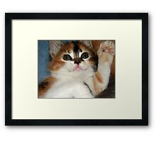 Hi There! Framed Print
