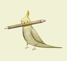 Cockatiel & Pencil by Sophie Corrigan