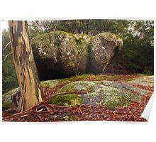Hippo rock at Mt Buffalo National Park, Victoria Poster
