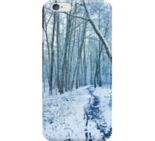 winter scene iPhone Case/Skin