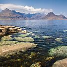 The Cuillins from Elgol by Shaun Whiteman