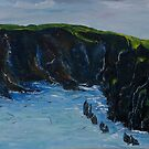 Cape Clare island windward side by Conor Murphy