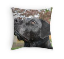 I am yours Throw Pillow
