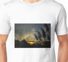 Sunset 2, April 2011 Unisex T-Shirt