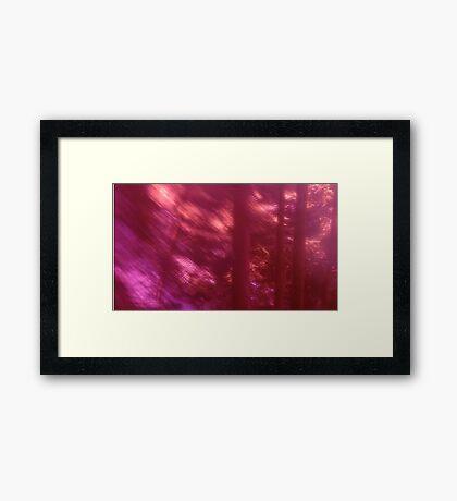 Back to the vivid forest n°9 Framed Print