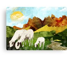 Mountain goats Canvas Print