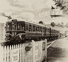 104 at Cheddleton by Aggpup