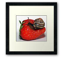 Dessert for Snail Framed Print