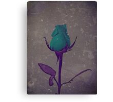 Fantasy Teal and Purple Rose Bud Art Canvas Print