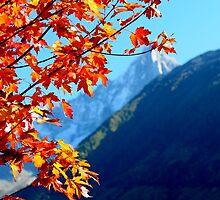 autumn in the Alps by watsonlj