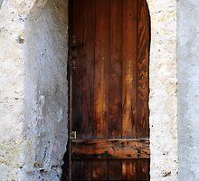 The Door 2 by watsonlj