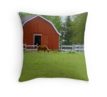 No Place Like Home..My little Red Shack.. Throw Pillow
