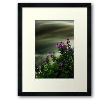 Flowers Over Mill Creek Framed Print