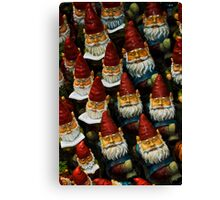 Gnomes Canvas Print